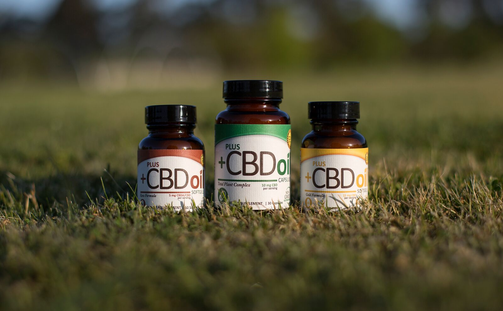 CBD OIL – Nature's Garden